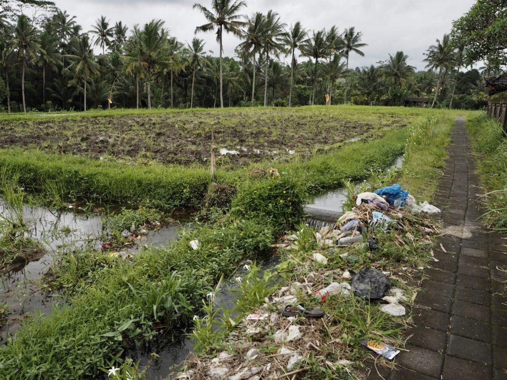 Balijské pole se zavlažovacím kanálem, který je plný odpadků.