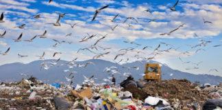 Skládka odpadu se spoustou odpadků, ptáky a bagrem