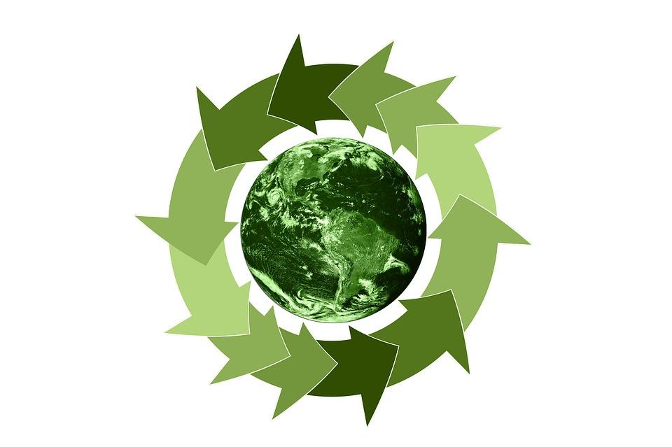 Zelená země