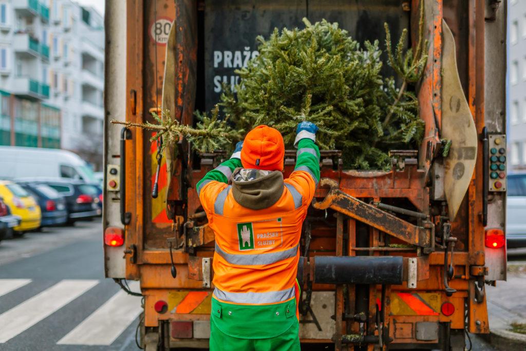 stromeček, odpad, pražské služby